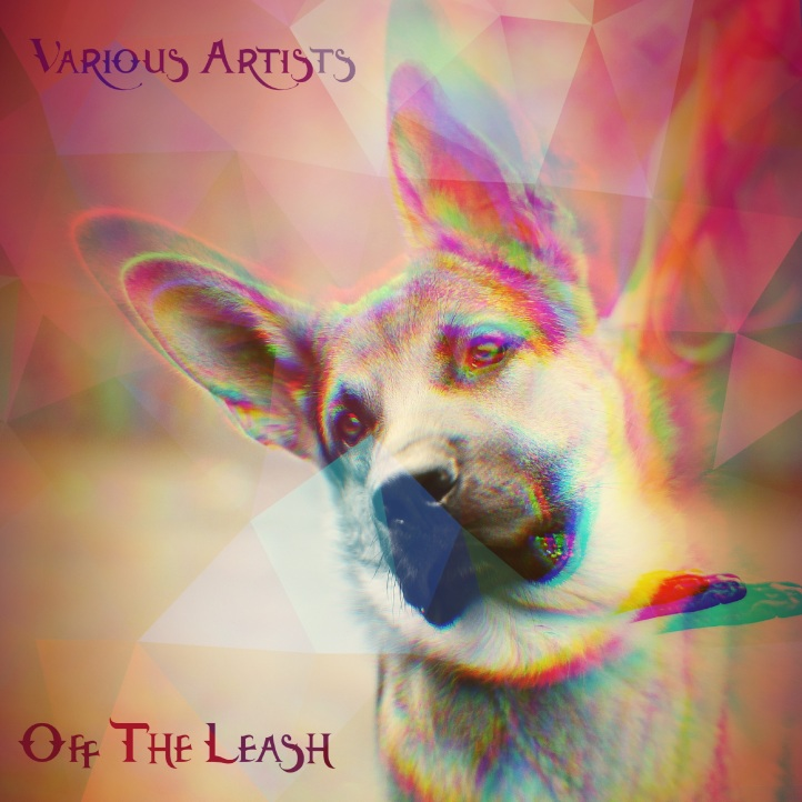 Off The Leash Cover